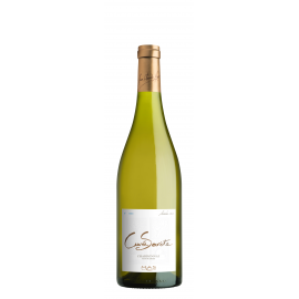 Languedoc blanc cuvée secrète sans sulfite chardonnay 2015 bio